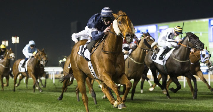 Dubai Horse Racing World Cup 2018 to be Held on March 31st
