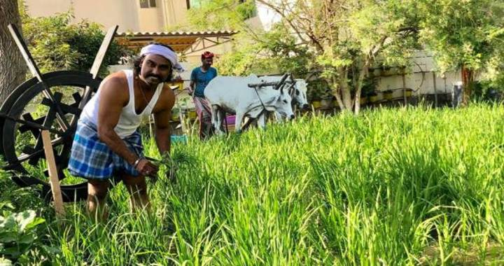 Kerala Farmer in the UAE Sudheesh Guruvayoor gets into Guinness Book of World Records